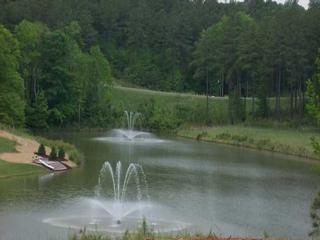 Pond fountain view from Lot 101 - $59,900
